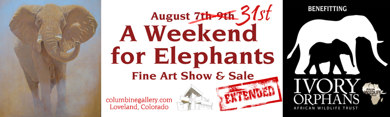 A Weekend for Elephants at Columbine Gallery African Wildlife Trust Artist Ambassadors Against Poaching