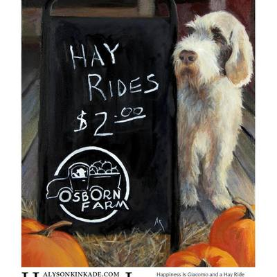 "Stop by Osborn Farm this October and pick up a magnet of  Alyson Kinkade's painting ""Happiness Is Giacomo and a Hayride"", just $2!  You need pumpkins anyway! If this isn't part of your Fall family traditions, start now!  Comes with a special rate code towards a giclee canvas or paper print of Giacomo; or get a custom original oil of your own pet through alysonkinkade.com #MeetGiacomo #OsbornFarm #DogsOfOsbornFarm #HappinessIs #Giacomo #SpinoneItaliano #Pumpkins #HayRide #print #giclee #originaloil #art #dogart #petportrait #OctoberFun#HayRidesStillTwoDollars #AroundLoveland"