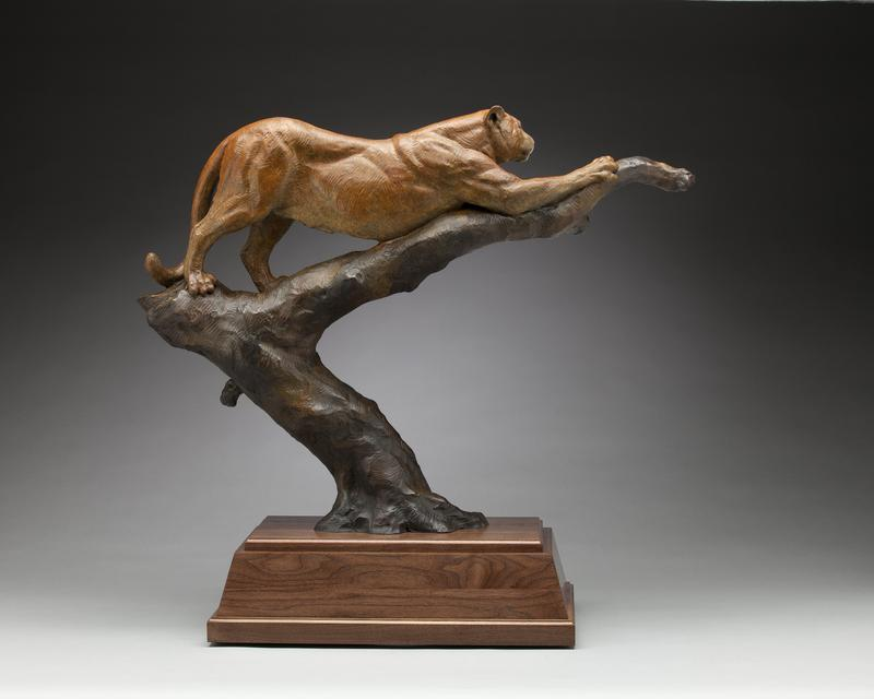 Mountain Lion Bronze Sculpture by Daniel Glanz available at Columbine Gallery home of the National Sculptors' Guild